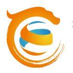 CE Academy Logo